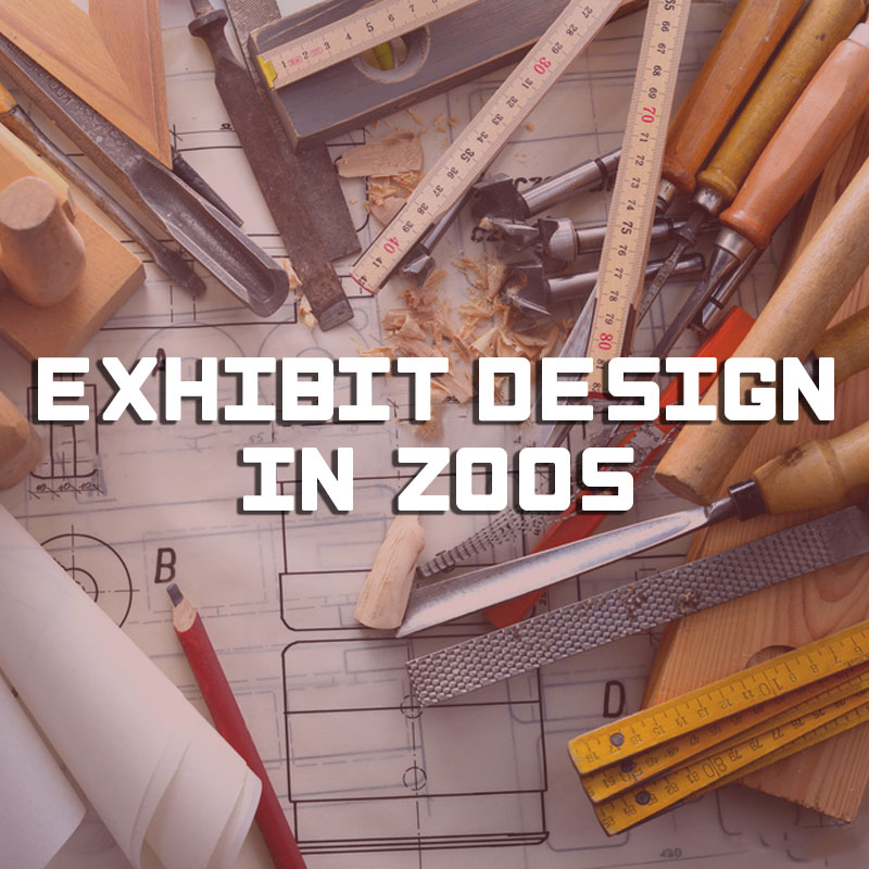 Course: « Exhibit design in zoos »